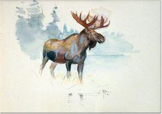Carl Rungius - Moose, Watercolor