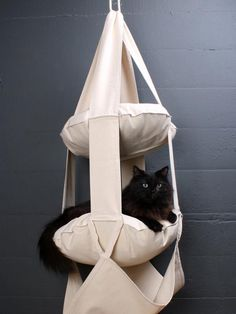 The Best Cat Condos, Beds and Shelves: They don't fly through the air, but cats love the large soft cushions that they can nap on. Perfect for kittens and active cats, the Cat Trapeze is the perfect place to play and rest. It's available in a two- and three-pillow version. From DIYnetwork.com