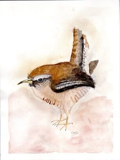 """Watercolor Original painting of  House Wren on 9"""" x 12"""" heavy watercolor paper, with white 11 x14"""" matt by BrennaStudio on Etsy"""