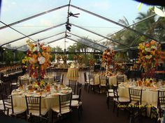 clear tents for outdoor weddings - Google Search