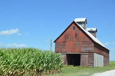 Cornfield and barn, Pine Township, Benton County, Indiana. Photo by Nyttend.