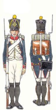 Infanterie de ligne 1808-1812