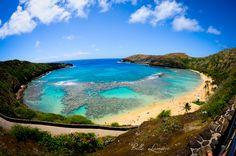 Hanauma Bay, Hawaii  BelleLumiereFoto.com