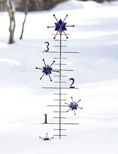 This Snow Gauge from Gardener's Supply Company measures up to 4 feet of snow, so it should be good just about anywhere - except Buffalo!
