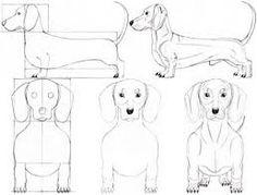 draw dogs - Google zoeken