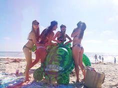 turtle fun at the beach #sandiego