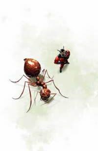 Homem-Formiga | Marvel já deu o sinal verde para o filme de Edgar Wright