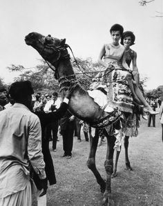 Mrs. Kennedy and her sister, Lee Radziwill, spend the final day of their March 1962 tour of Pakistan riding a camel.
