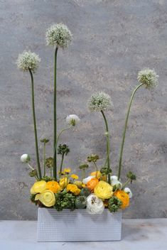 modern spring garden yellow; Dandelion Ranch