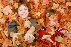 Wonderopolis-   joy of learning  - Wonder #47 - Leaves Change Static Image