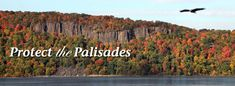 The natural beauty of the Palisades cliffs rising above the west bank of the Hudson River has long been appreciated by generations of residents & visitors. Protected for over 100 years through the efforts of citizens of New Jersey & New York, the Palisades are included in the National Natural Landmarks Program administered by National Parks Service, listed in the National Register of Historic Places, and have been included on World Monument Fund's 2014 World Monuments Watch list.