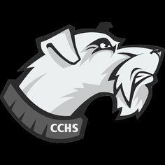 Carbondale Community HS