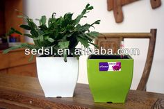 """alibaba Top 1 Pot Supplier"" Christma Ornament Decoration Home Garden Small Plastic Flower Pot - Buy Garden,Plastic Flower Pot,Christma Ornament Product on Alibaba.com"