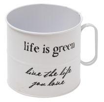 Life is #Green! Mugs, Tableware, Green, Life, Green And Brown, Dinnerware, Tumblers, Tablewares, Mug