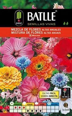 Semillas de flores altas