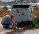 Caki feeds a street dog in Sarajevo
