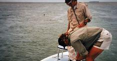 Geführte Angeltouren mit Guide in Florida / USA Hai, Florida Usa, Solar, Fishing, Travel Report