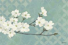 Dogwood Blossoms -             Fotobehang & Behang -           Photowall
