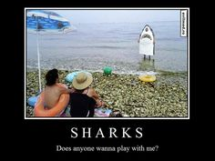 beach ,costume ,fail ,fun ,funny ,photography ,shark ,water,motivational,ocean,photography,comedy,humor,laughter,entertainment,lol,OMGWTF