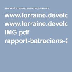 www.lorraine.developpement-durable.gouv.fr IMG pdf rapport-batraciens-23022009_allege_cle5b77ef.pdf