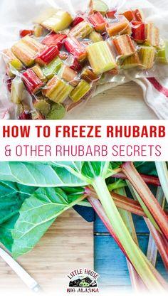 Freeze Rhubarb, Growing Rhubarb, Rhubarb Plants, A Food, Good Food, Crazy Kitchen, Gbbo, British Baking, Best Food Ever