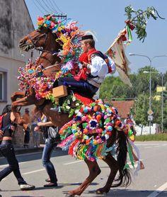 """The ride of the kings"" (South Moravia), Czechia"