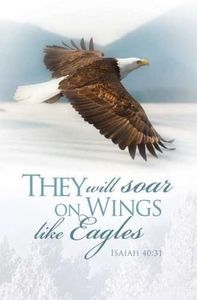 They Will Soar on Wings Like Eagles Isaiah 40:31