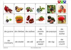 mini loco fruit 6