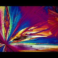 Licores al microscopio