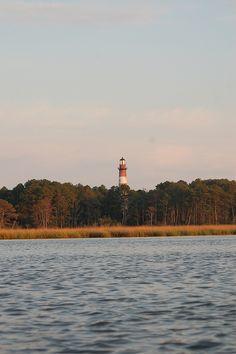 Assateague Island, Chincoteague, VA