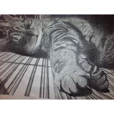 Week 4:  This is a great value drawing because the angle of the cat makes for an interesting composition. Also, the use of different pencil techniques makes the fur look realistic.