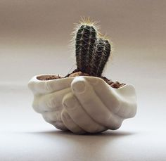 55 Unique Planters and Cool Pots For All House Plants! Discover all the most unique planters and cool pots for your favourite houseplants here in this epic list of the most creative planters available to buy! Hand Planters, Flower Planters, Ceramic Planters, Flower Pots, Cement Pots, Cactus Flower, Ceramic Mugs, Ceramic Bowls, Design Cour