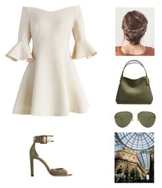 Untitled #729 by france247 on Polyvore featuring polyvore, fashion, style, Chicwish, Jimmy Choo, Coach, Linda Farrow and clothing