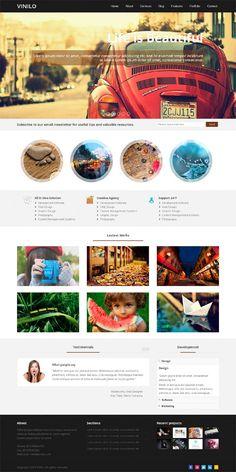 Vinilo - Responsive Wordpress Theme