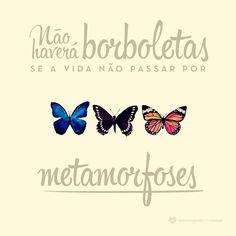 Não haverá borboletas se a vida não passar por metamorfoses. #mensagenscomamor #borboletas #metamorfoses #fases #frases #reflexões