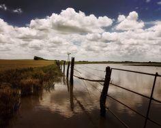 Flooded Fields   by Wayne Greer