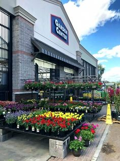 15 Best LOWES GARDEN CENTER DISPLAYS images  Garden