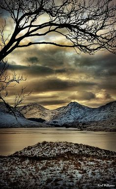 ~~Arklet Branches ~ Loch Arklet, Trossachs, Stronachlachar, Scotland, GB by Shuggie! What A Wonderful World, Beautiful World, Beautiful Places, Beautiful Pictures, All Nature, Belle Photo, Beautiful Landscapes, Wonders Of The World, Mother Nature