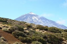 Tenerife, Teide, Volcan, Îles Canaries, Nature