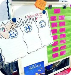 Activities, Anchor Charts, Directed Drawings, and Crafts for Stellaluna 2nd Grade Books, 2nd Grade Ela, 2nd Grade Classroom, 3rd Grade Reading, Second Grade, Classroom Charts, Classroom Ideas, Singular And Plural Nouns, Stellaluna