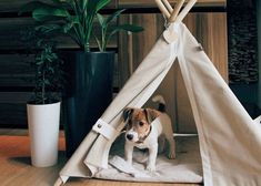 Excited to share the latest addition to my #etsy shop: Dog teepee bed, dog teepee, cat teepee, pet teepee bed, dog house, cat house, dog bed, cat bed, dorm decor, pet tent, summer outdoor