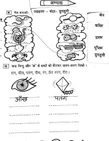 Hindi Grammar Work Sheet Collection for Classes 5,6, 7 & 8