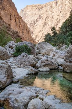 Looking for Oman adventures? Here are the 11 best activities for adventurous travelers headed to the lovely country of Oman, a great intro to the Middle Eas Oman Travel, Asia Travel, Travel Tips, Oman Tourism, Places To Travel, Places To Visit, Cliff Diving, Visit Dubai, Countries To Visit
