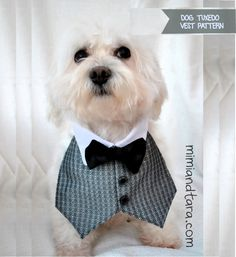 Free dog tuxedo vest pattern to sew an elegant tuxedo suit if you combine with the tuxedo jacket premium pattern. DIY dog clothes!!