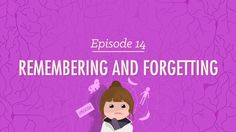 Remembering and Forgetting - Psychology #14
