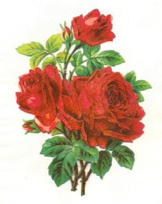 large victorian scrap red roses