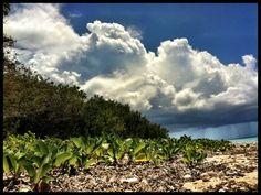 Playa de Culebrita. Foto José E. Maldonado / www.miprv.com