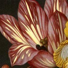 Bouquet of flowers.Ambrosius Bosschaert the Elder