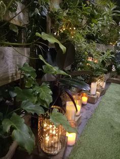 Green wall, vertical garden, herb wall, pallet wall, wedding expo, candles, lanterns, fairy lights