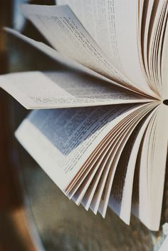 pages, book...